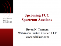 Spectrum Auctions